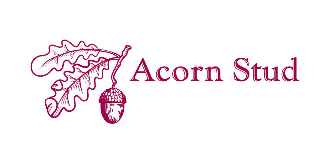 Acorn Stud Logo