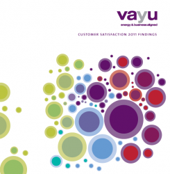 Vayu Customer Satisfaction Findings