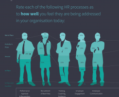 HRM HR Report 2015