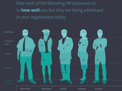 HRM HR Report 2015